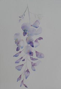 wisteria sketch april 2010.jpg 410×600 pixels