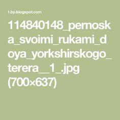 114840148_pernoska_svoimi_rukami_doya_yorkshirskogo_terera__1_.jpg (700×637)