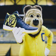 brand new ec806 c7e33 Bear, Essentials, Air Jordans, Basketball, Netball, Air Jordan, Bears