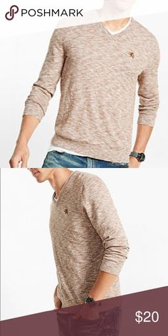 🎉host pick🎉 Brown express vneck sweater NWT Brand new express sweater. In person it looks a bit darker than the one the model is wearing. Express Sweaters V-Neck