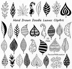 Hand Drawn Doodle Leaves Clipart, leaves silhouette, PNG, EPS, AI, Vector, Foliage Clip art, for Personal and Commercial Use by PassionPNGcreation on Etsy https://www.etsy.com/listing/251441610/hand-drawn-doodle-leaves-clipart-leaves