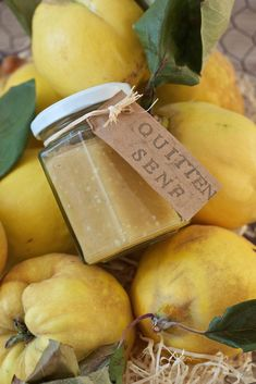 Quittensenf Quince Mustard Recipe – Homemade quince mustard goes well with cheese. Quince mustard is also a welcome gift from the kitchen. // quince mustard sauce – sweet and slightly hot, perfect with cheese. Hot Sauce Recipes, Barbecue Sauce Recipes, Bbq Sauces, Chutneys, Barbecue Sauce Recipe Molasses, Mustard Recipe, Recipe From Scratch, World Recipes, Healthy Foods To Eat