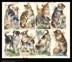 Cartoline (1880-1890)