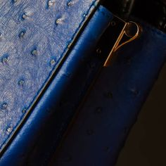 part of female handbag with embossed under the skin of ostrich for