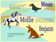 Benjamin A cynical, pessimistic donkey who continually undercuts the animals' enthusiasm. Mollie A vain horse who prefers . Animal Farm Orwell, Farm Animals, Animals And Pets, Funny Animals, Animal Sketches, Animal Drawings, Animal Farm Summary, Animal Farm Quotes, Animal Tattoos For Men