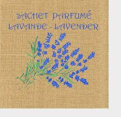 Цветы, травы - Ксения Свешникова - Веб-альбомы Picasa