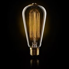 40 watt vintage style squirrel cage light bulb from ruby roost