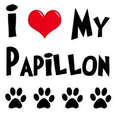 Papillion too!