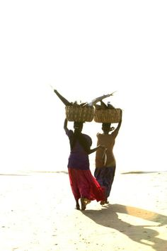 women carrying fish to market near Bhubaneswar, Orissa, India