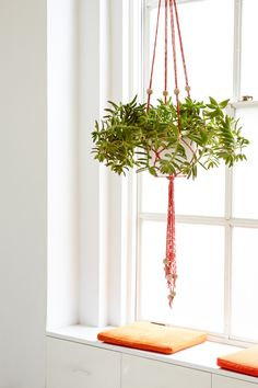 Make this DIY Finger Knit Hanging Plant Holder to hold your favorite plant. This DIY project is easy to make and a great kids craft project too!