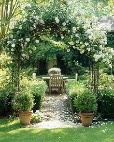 trellis, arbor, climbing roses, boxwoods, terracotta, gravel path, teak dining, outdoor patio, pea gravel