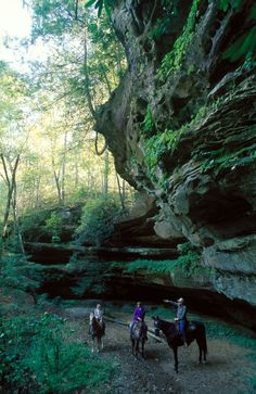Big times in the Big South Fork | Tennessee Triptales  http://www.tnvacation.com/triptales/big-times-in-the-big-south-fork/#  Come visit Tennesse. :)