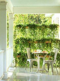Lovely Hanged Garden!