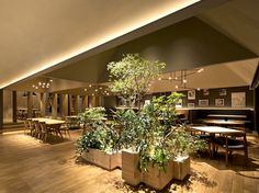 Japanese Project for Italian Restaurant in Tokyo natural materials green plants