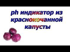 Ph индикатор из краснокочанной капусты