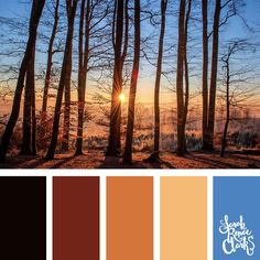 Wanderlust color palette - Get lost in the forest... I love the warm mood of this color scheme | Click for more color combinations inspired by beautiful landscapes and other coloring inspiration at http://sarahrenaeclark.com | Colour palettes, colour schemes, color therapy, mood board, color hue