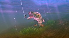 Download .torrent - Rapala – XBOX 360 KINECT - http://torrentsgames.org/xbox-360/rapala-xbox-360-kinect.html