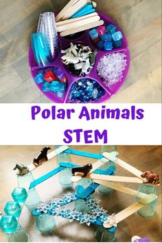 #MakingClothesFromOldClothes Polar Animals Preschool Crafts, Animal Activities, Preschool Themes, Artic Animals, Science Experiments For Preschoolers, Preschool Winter, Tray, Making Clothes, St Albans