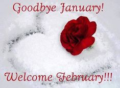 Goodbye January, Hello February february february quotes hello february goodbye january goodbye january hello february goodbye january quotes good morning happy last day of january last day of january Welcome February Images, Hello February Quotes, Happy February, January Images, Seasons Months, Days And Months, Months In A Year, 12 Months, Winter Months