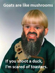 wtf: goats are like mushrooms. if you shoot a duck, i'm scared of toasters