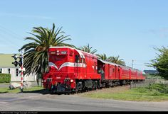 RailPictures.Net Photo: 1431 Steam Incorporated EMD G12A (DA class) at Eltham, New Zealand by John Russell