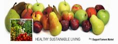 5 Ways Corrective Lenses Break Down Your Eyesight and How to Improve Your Vision Naturally/Healthy Sustainable Living