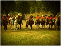 Cavalgada com os amigos. ..tdb.