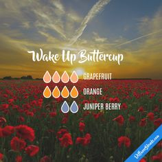 Wake Up Buttercup - Essential Oil Diffuser Blend