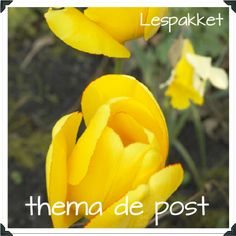 Thema: post - Lespakket
