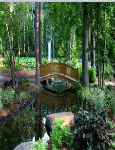 Norfolk Botanical Garden, Norfolk, Virginia: www.norfolkbotanicalgarden.org/