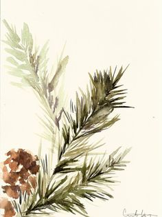Pine Tree Branch Painting Original Watercolor by CanotStop on Etsy