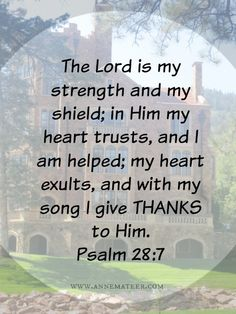 Psalm 28:7 (NKJV) ~~ The Lord is my strength and my shield; My heart trusted in Him, and I am helped; Therefore my heart greatly rejoices, And with my song I will praise Him.