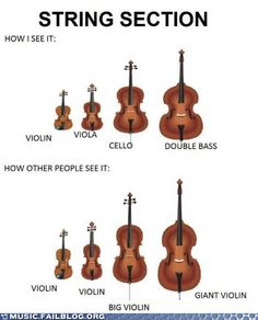 What Is This, a Violin for GIANTS? #music #violin