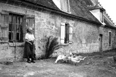 Französische Frau und ihre Gänse:  Ländliche Idylle spiegeln diese Fotos - und...