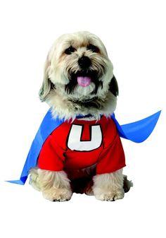 Under Dog Dog Costume