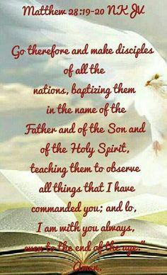 Matthew 28: 19-20