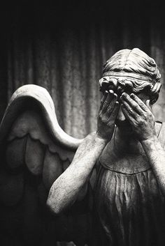 The Weeping Angels: Don't Blink. Blink and your dead. Don't turn your back. Don't look away. And remember: don't Blink! #doctorwho