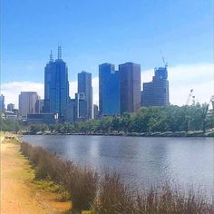 The run in by the Yarra River