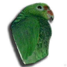 meu Papagaio (peito Roxo), apelido, Loro, viveu entre 1990 e 2004