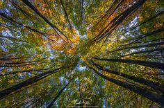 Cracking colors - by ilias nikoloulis