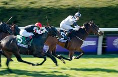 Whitmore wins Breeders' Cup Sprint in fourth try Race Horses, Horse Racing, Morning Line, Breeders Cup Classic, Churchill Downs, Long Shot, 7 Year Olds, Glass Slipper, World Championship