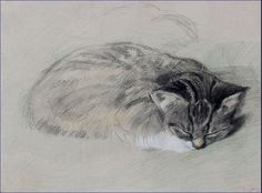 """Cat"" ~ Drawing by Cornelis Rudolf Hendrik 'Kees' Spoor (1867-1928), Dutch Artist, Engraver, Draughtsman & Book Binding Designer ...."