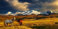 Mongolei Landschaft1 im Mongolei Reiseführer http://www.abenteurer.net/2423-mongolei-reisefuehrer/