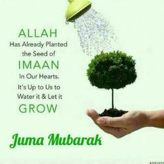 Jummah Mubarak Messages, Jumah Mubarak, Jumma Mubarak Quotes, Jumma Mubarak Images, Allah Quotes, Quran Quotes, Wish Quotes, Daily Quotes, Prayer For The Day