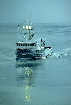 picture of Opilio Tanner Crab Fishing Alaska Travel, Alaska Cruise, Deadliest Catch, Fishing Vessel, Boat Names, Boat Art, Tug Boats, Best Fishing, Fishing Boats