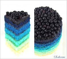 Blueberry Lemon Rainbow Cake - white velvet cake, lemon curd, and fresh blueberries. Or use red tint and create a raspberry lemon cake... or one of each! Instructions are also provided for mini cakes so it's easy to divide the batter and customize the colours.