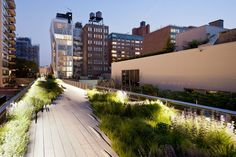 Take a walk along the High Line in Chelsea.