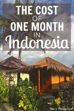How much does a month in paradise cost? Alex in Wanderland breaks down what you'll need for a month on the island of Gili Trawangan, Indonesia. #budgeting #traveltips