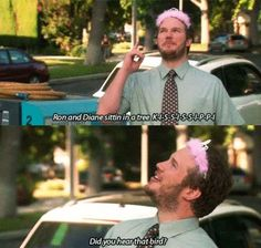 One of the best jokes on parks and rec in my opinion. Makes me laugh every time I watch it. Parks And Recs, Parks Department, Verse, Parks And Recreation, Best Shows Ever, Best Tv, Movie Quotes, Favorite Tv Shows, Just For Laughs