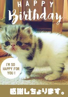 感謝の気持ちを伝えるお誕生日感謝画像